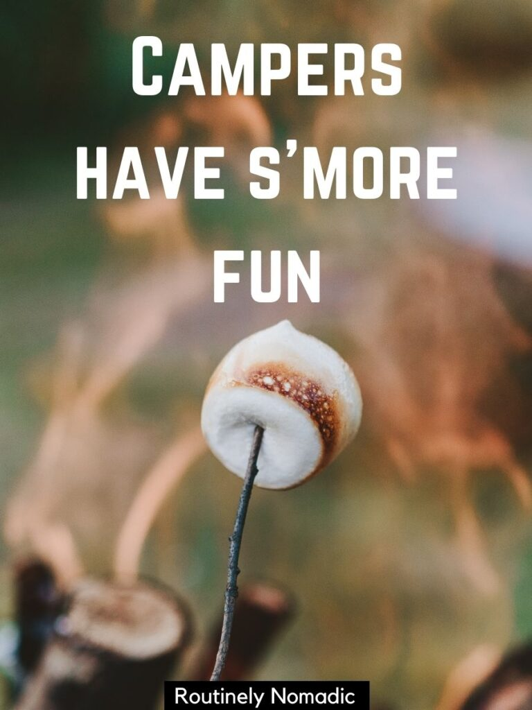 Marshmellow on a stick over a fire with a funny camping captions that reads campers have s'more fun