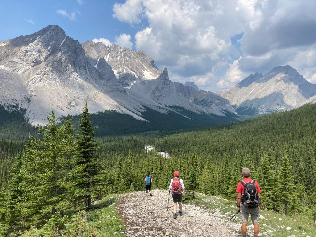 Three people hiking down from Rae Glacier, a Elbow Lake hike, with mountains ahead and trees below