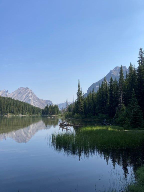 View of the lake from the Elbow Lake hike (loop) and the Elbow Lake campground with trees and mountains reflected