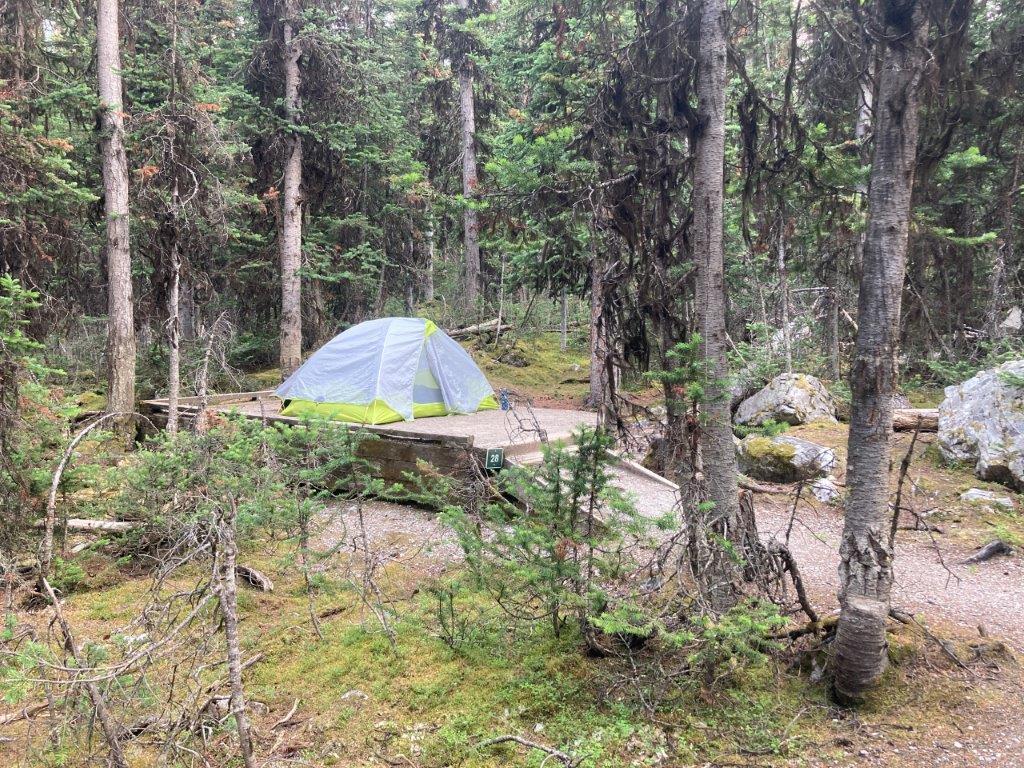 Tent in the woods at Lake O'Hara camping