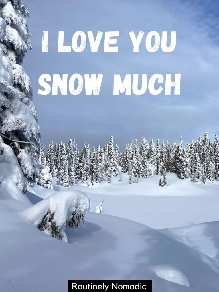 Snow covered lake and trees with a captions about winter love that says I love you snow much