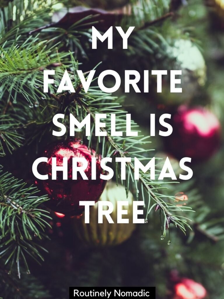 Close up of tree and decorations and Christmas tree captions the says my favorite smell is Christmas tree
