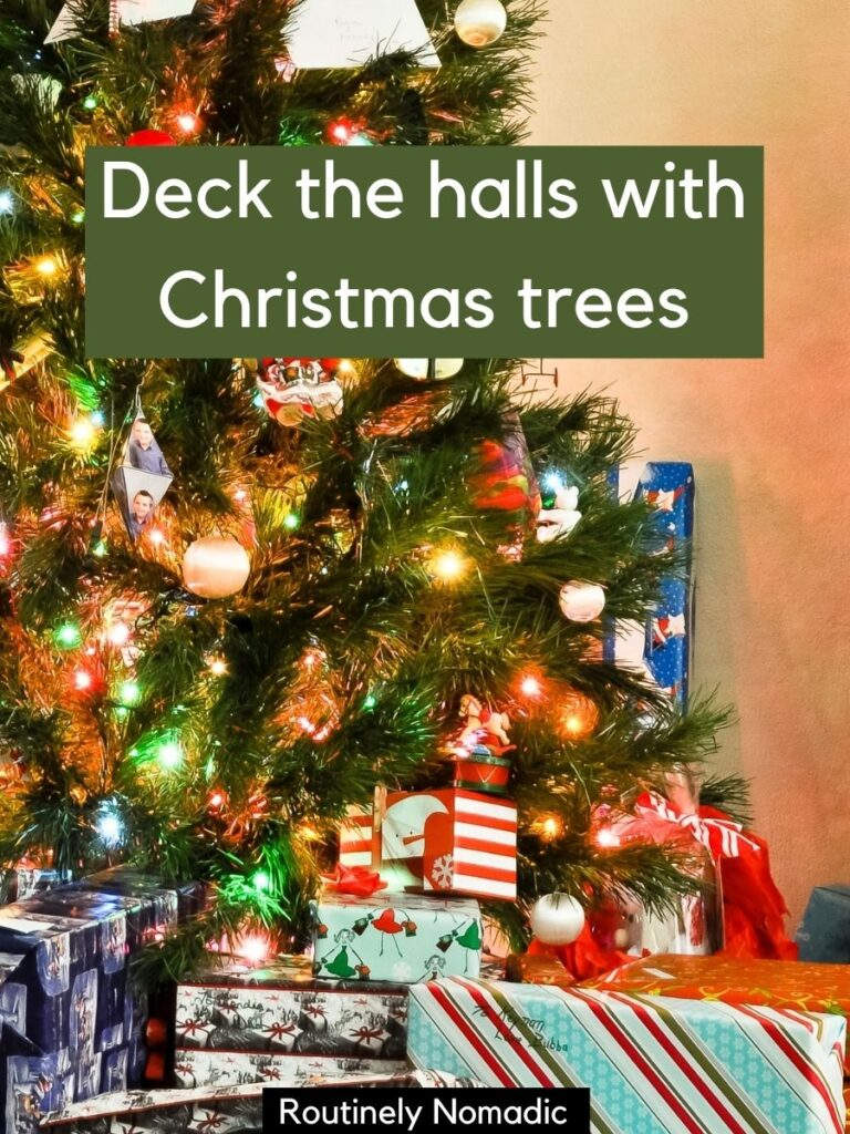 Decorated tree with presents and a Christmas tree Instagram captions that says deck the halls with Christmas trees