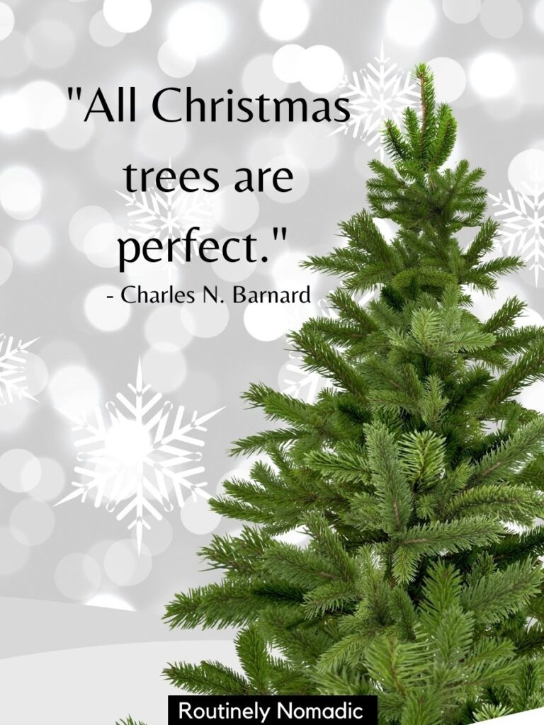 Pine tree with snowflake background and a Christmas tree quotes for Instagram