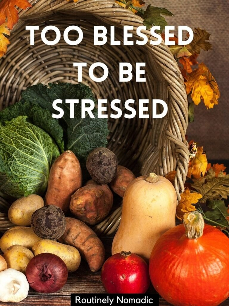 Horn of plenty with a cute Thanksgiving captions that says too blessed to be stressed