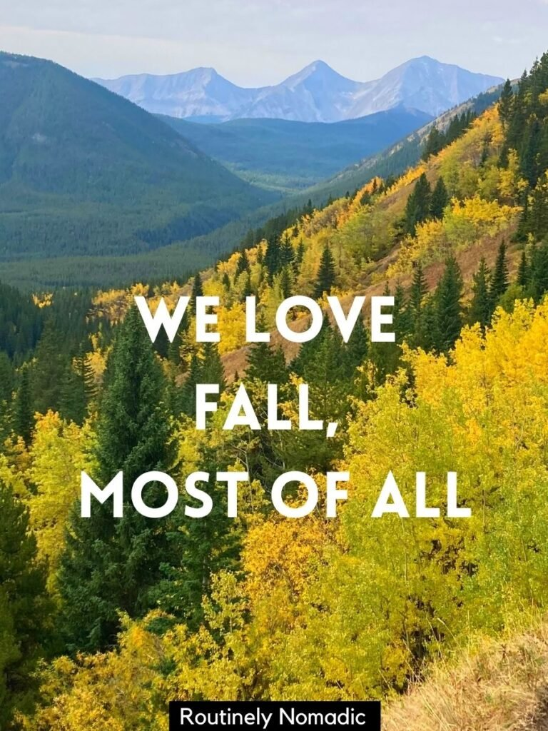 Yellow trees with mountains behind and a fall captions with friends that reads we love fall, most of all