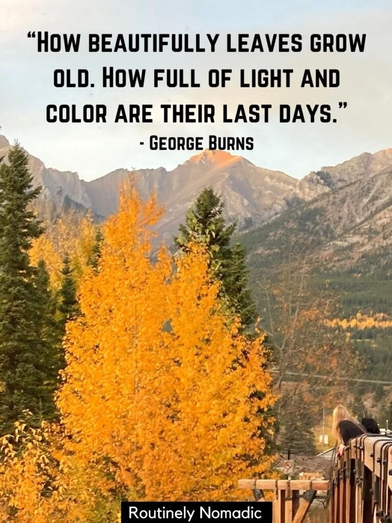 Tree with yellow leaves with mountains behind and a fall colors quotes by George Burns