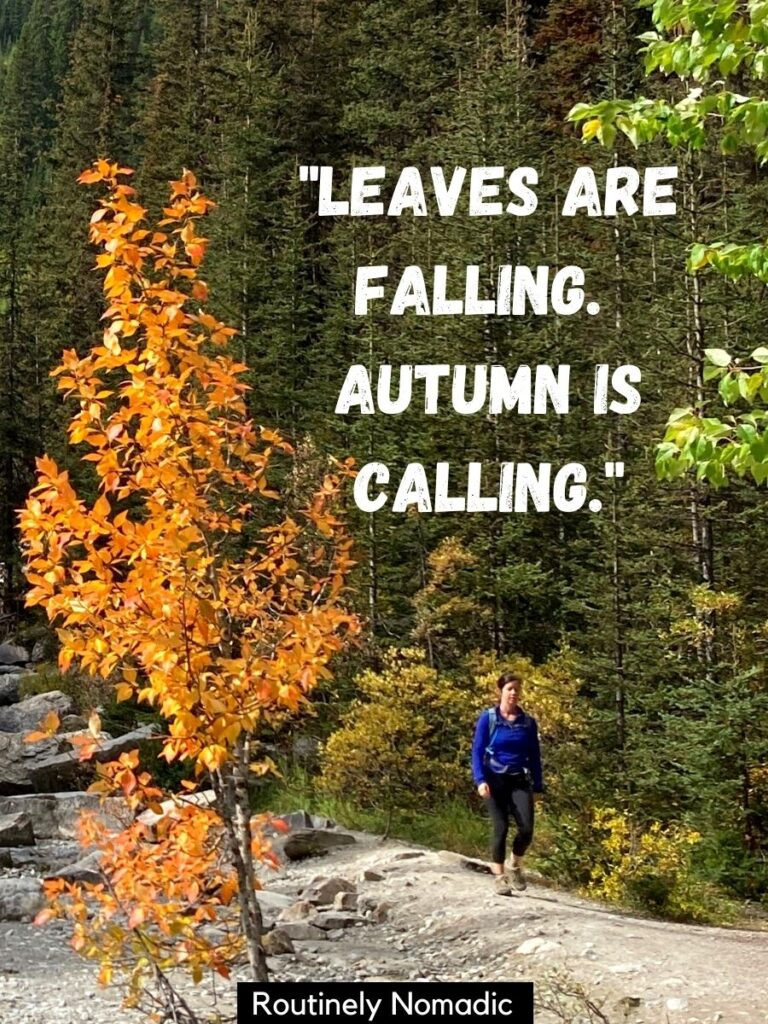 Woman hiking beside a tree with orange leaves and a fall sayings that reads leaves are falling, autumn is calling