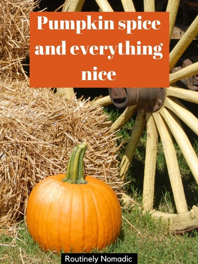 Pumpkin, bale of hay and wagon wheel with a fall selfie captions that reads pumpkin spice and everything nice
