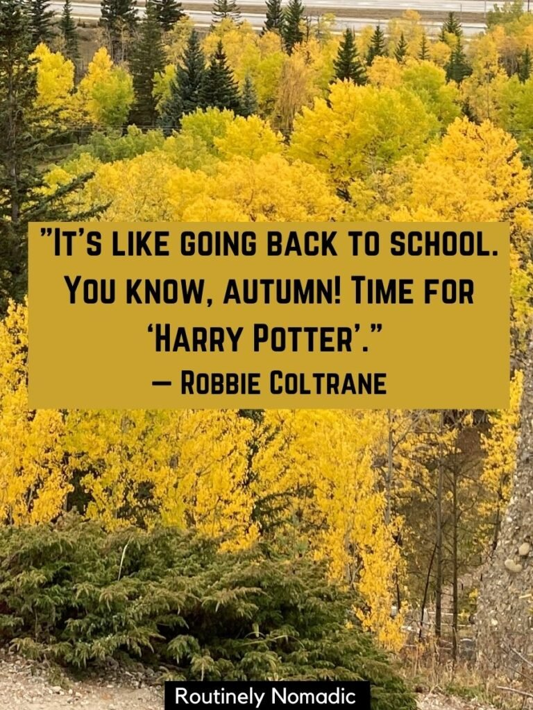 Trees with yellow leaves and a funny fall quotes by Robbie Coltrane