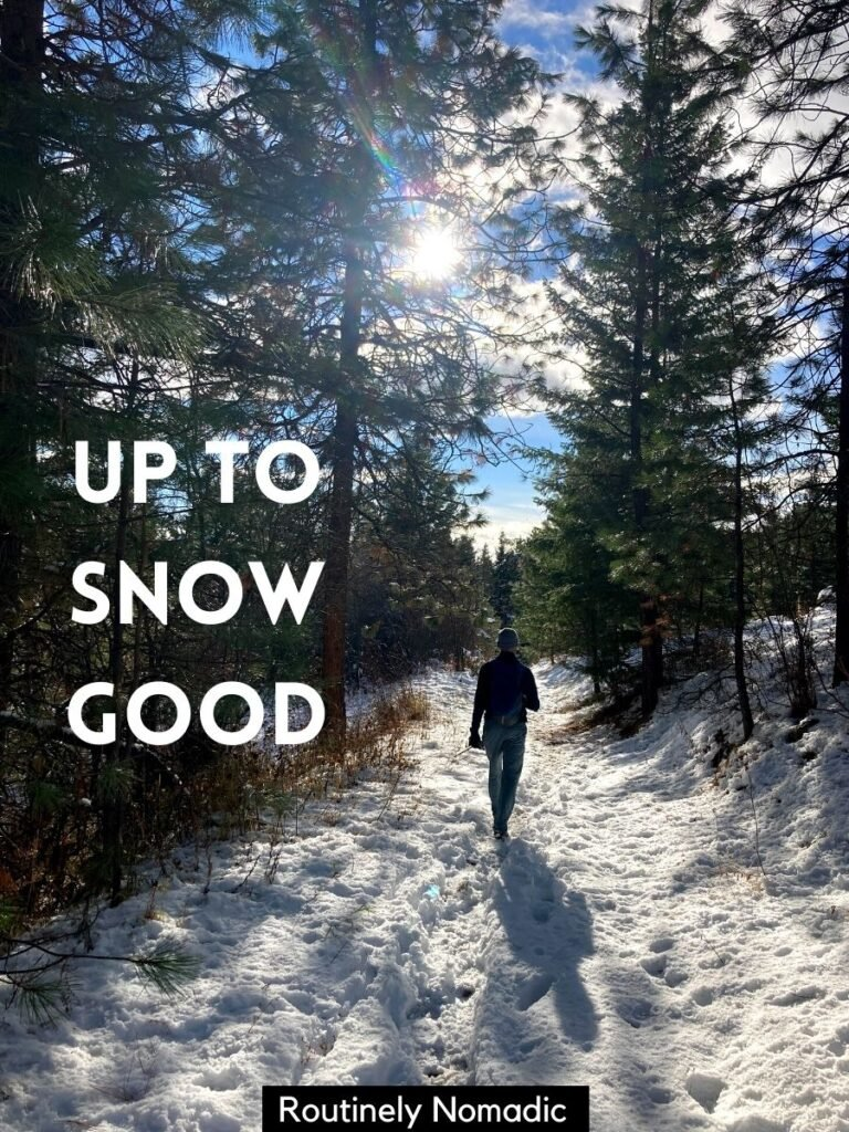 Person walking on snowy path and funny snow captions that reads up to snow good