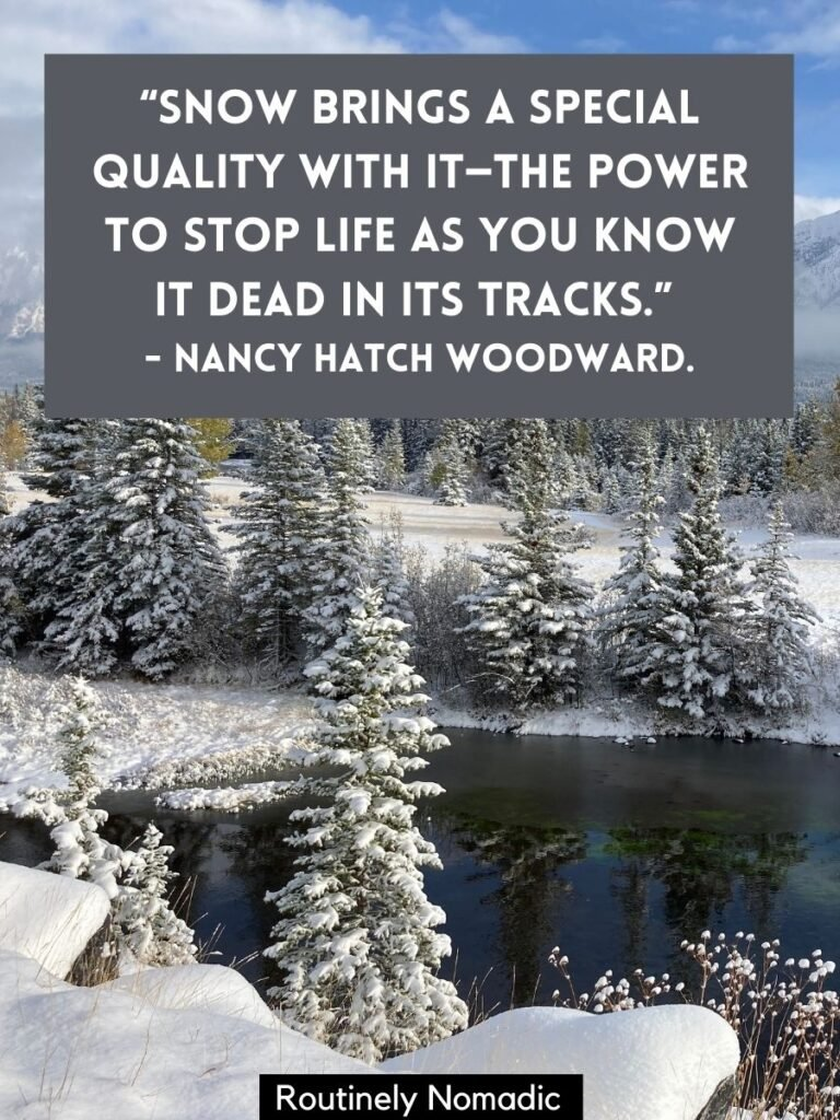 Snowy trees by a river with funny snow day quotes by Nancy Woodward