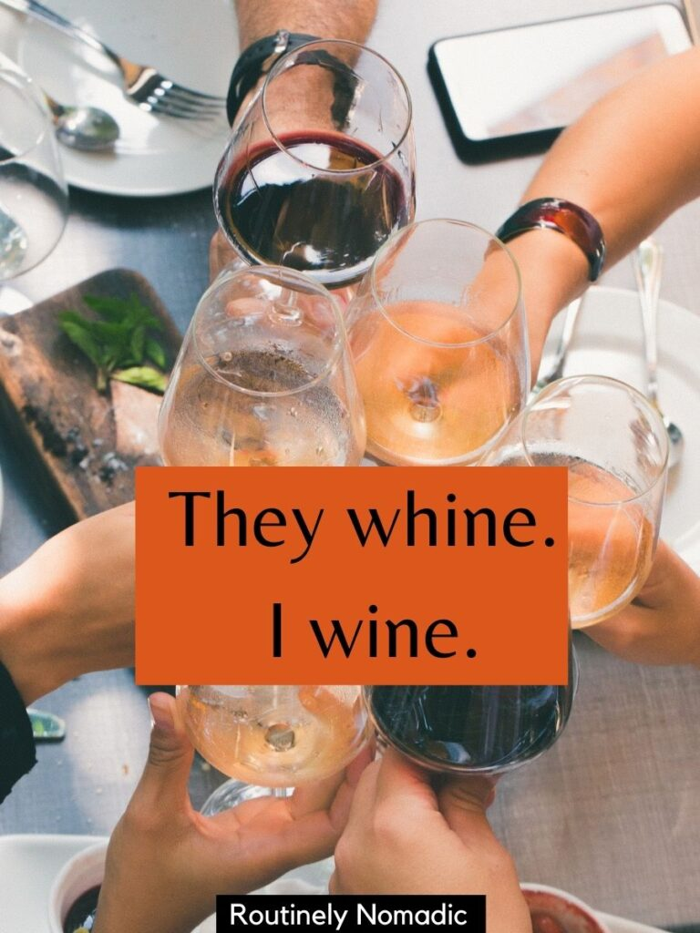 People cheersing with wine glasses with a funny thanksgiving captions that says They whine, I wine