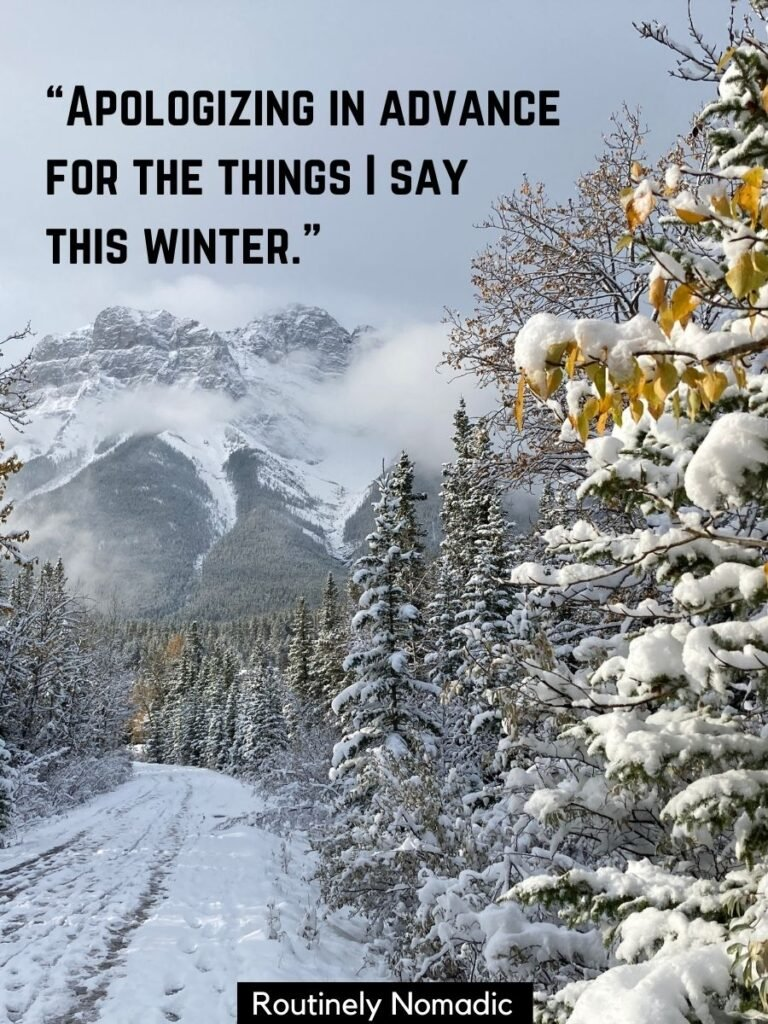 Path beside snowy trees with funny winter sayings