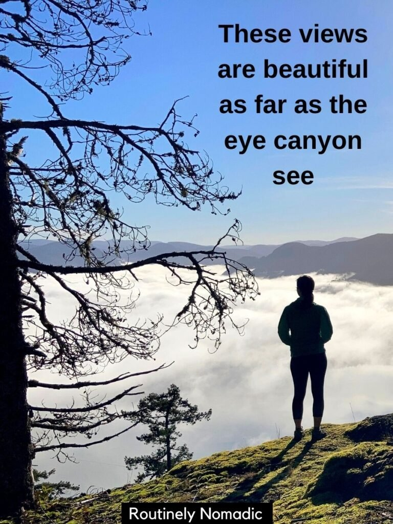 Person on hill overlooking cloud inversion with a hiking puns and hiking pun captions that says These views are beautiful as for as the eye canyon see