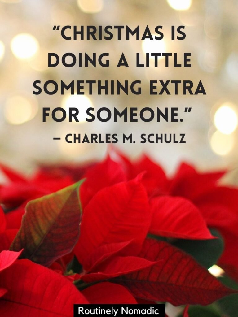 Red Christmas plant leaves with a Inspiring short Christmas quotes by Charles Schulz