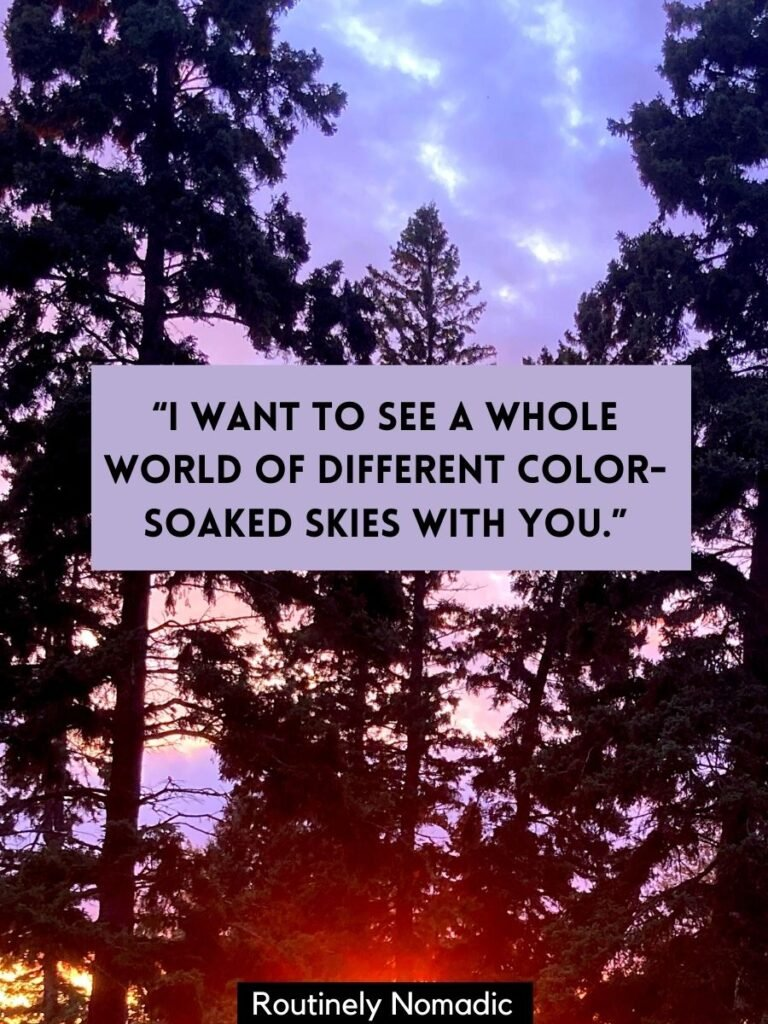 Trees silhouetted by a sunset with a love in sunset quotes that says I want to see a whole world of different color-soaked skies with you