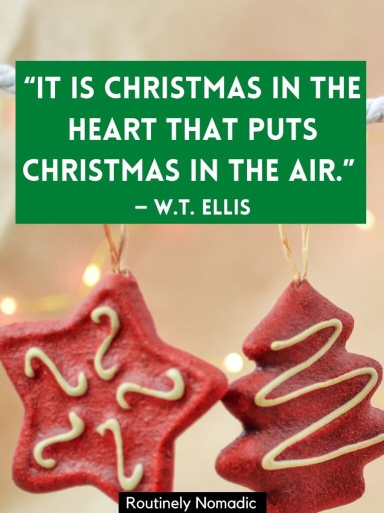 Handing Christmas cookie decorations with a short Christmas quotes for instagram by W T Ellis