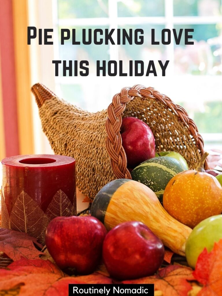 Thanksgiving horn with fruit and gourds and Thanksgiving puns for Instagram that reads pie plucking love this holiday