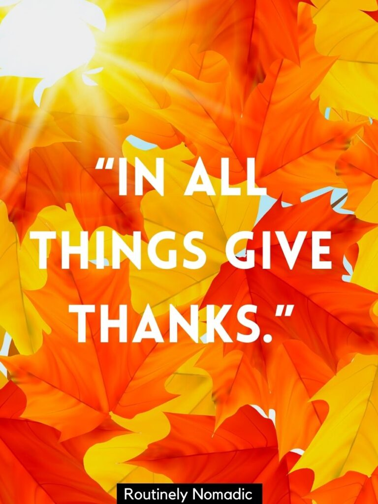 Fall leaves with a Thanksgiving sayings that reads in all things give thanks