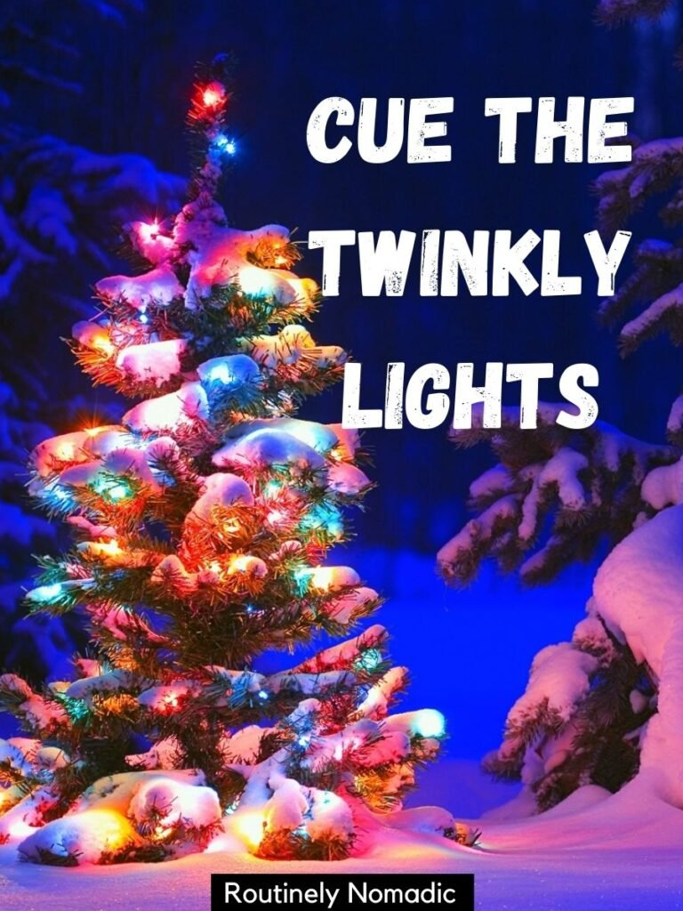 An outdoor Christmas trees with colored lights and a the Christmas tree is up captions that says cue the twinkly lights