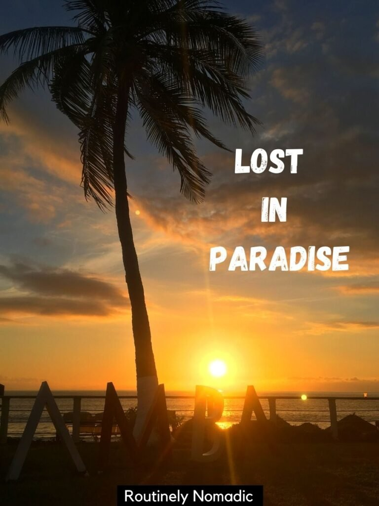 A palm tree silhouetted at sunset with a vacation captions that reads lost in paradise