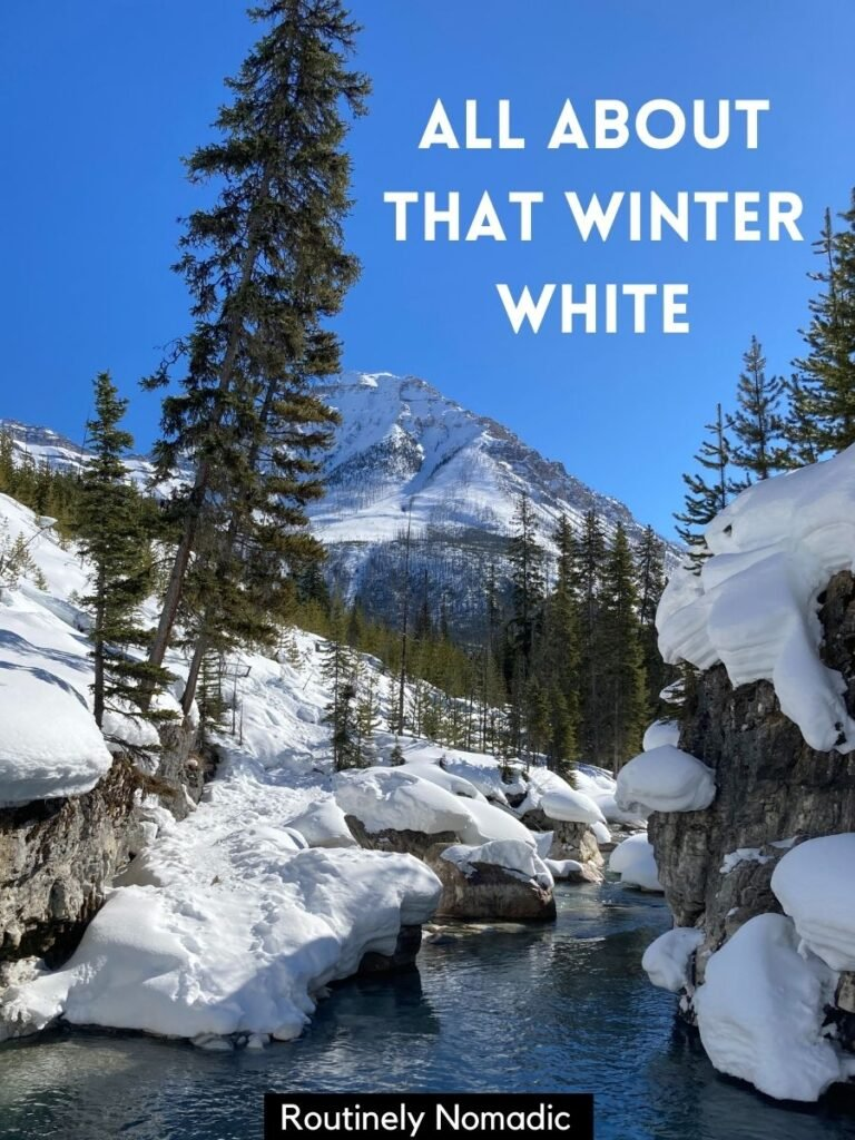 Stream with snowy banks and a winter captions that reads all about that winter white