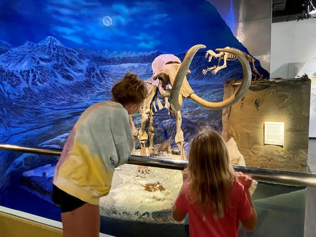 2 kids looking at dinosaur bones at the Drumheller museum