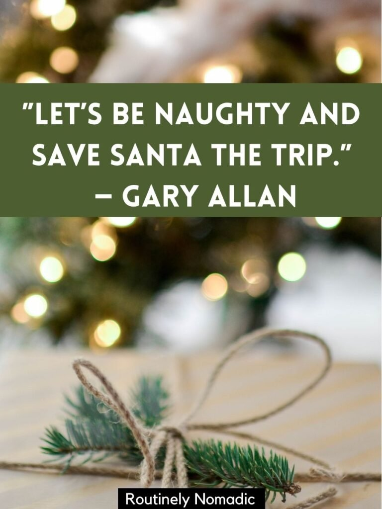 Pine needles with a bow around them and a funny short Christmas quotes by Gary Allan