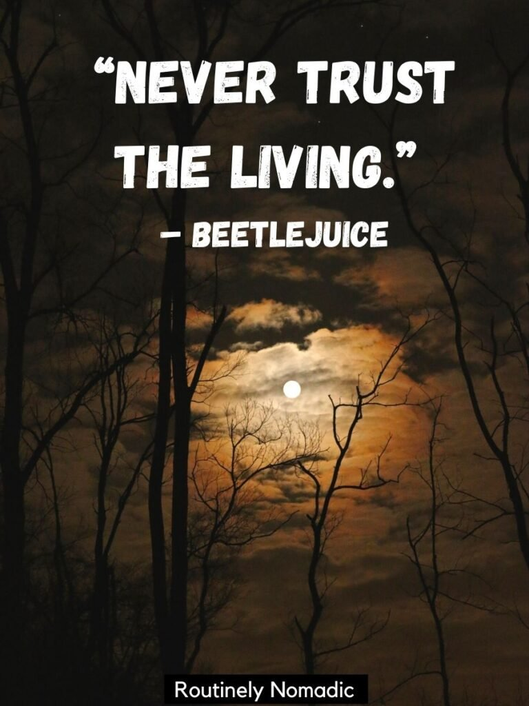 Moon through clouds and tree branches with a short funny Halloween Quotes for Instagram that says never trust the living