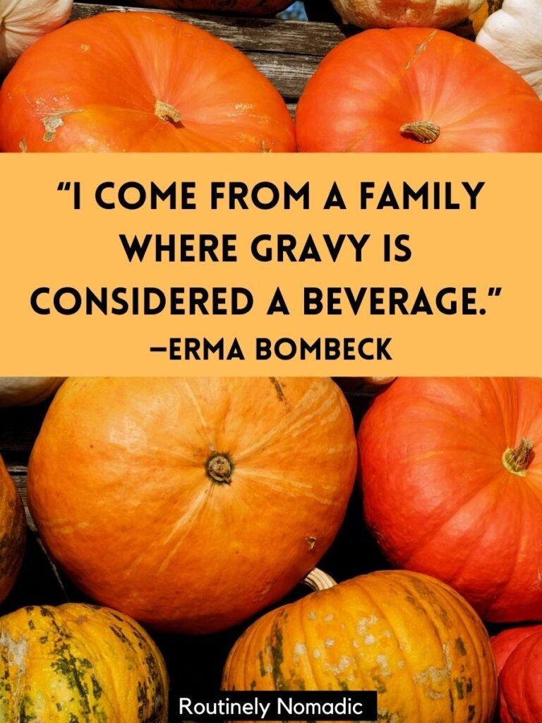 Orange Pumpkins in a row with short funny Thanksgiving Quotes for Instagram by Erma Bombeck