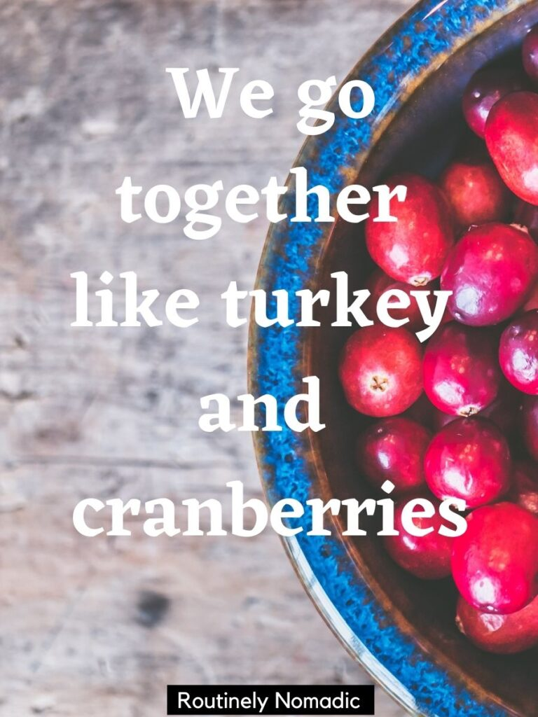 Bowl of cranberries with a funny Thanksgiving captions that says we go together like turkey and cranberries