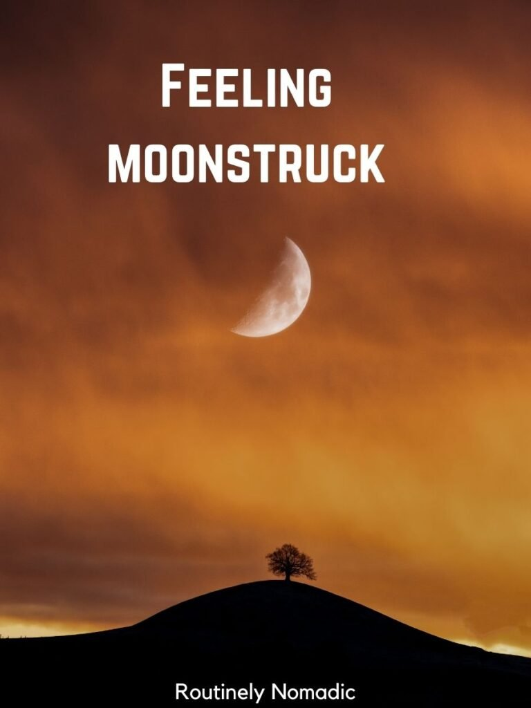Orange sky with a half moon and moon captions for Instagram that reads feeling moonstruck
