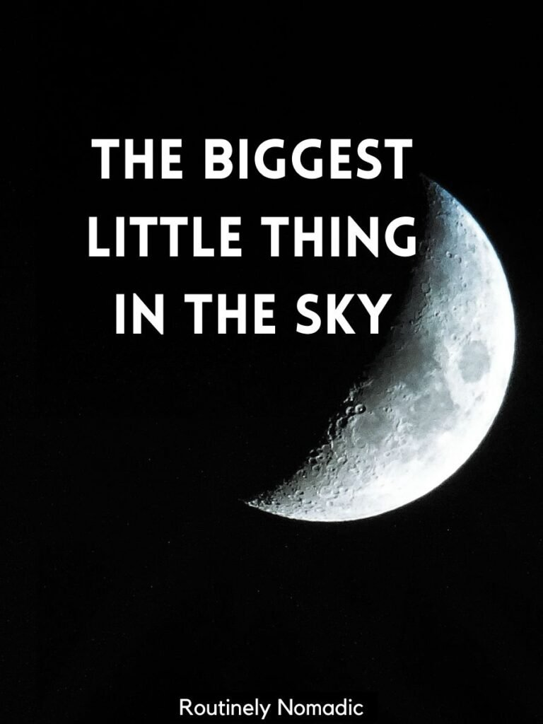 Half moon in dark sky with moon captions that reads the biggest little thing in the sky