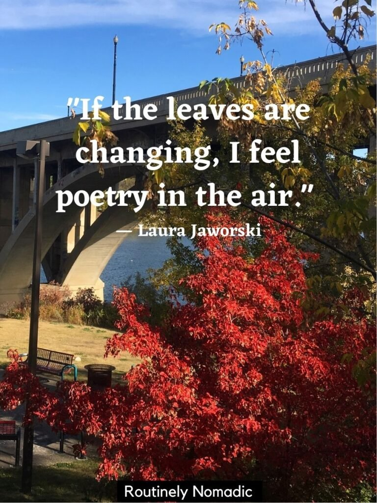 Red fall leaves in front of a bridge with a short fall quotes by Laura Jaworski